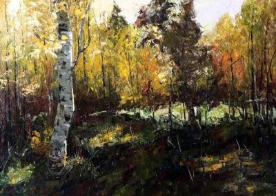 An oil painting on canvas of an aspen stand in the pacific northwest.